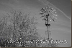 Windmill - Greyscale